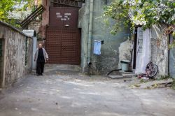 Backyard // Istanbul, Turkey
