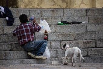 Stairs of Life // Jerez de la Frontera, Spain