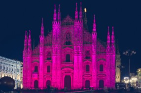 Pink Lady // Milano, Italy