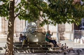 Shadows of the Trees // Rome, Italy