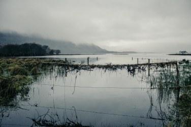 National Park in Killarney