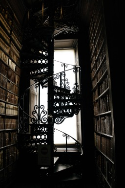 The library in the Trinity College is one of the most famous and beautiful of the world.