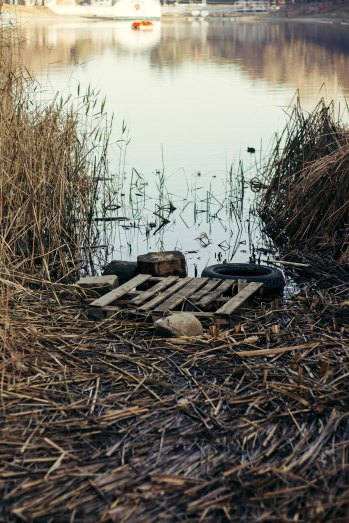 Leftovers, Turtle Lake, Tbilisi