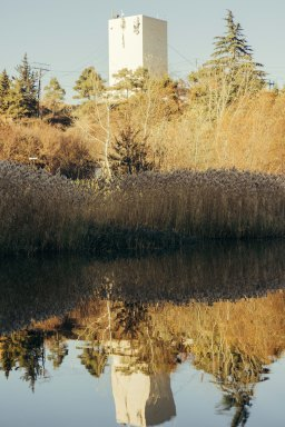 Reflections, Turtle Lake, Tbilisi