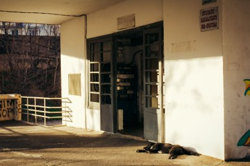 Siesta, Vake, Tbilisi