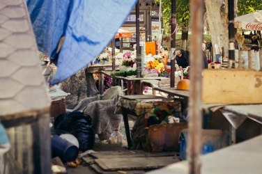 Flower Market, Tbilisi