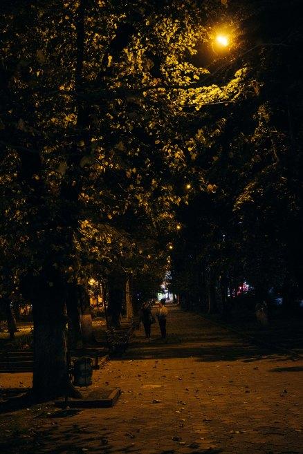 Walk in the Park, Kutaisi